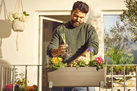 Plantenhangers kopen bij HORNBACH