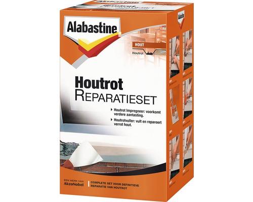 ALABASTINE Houtrot reparatieset 500 gr