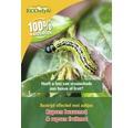 ECOSTYLE Aaltjes tegen larven van de fruitmot goed voor 10-60m²