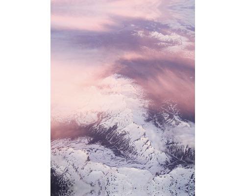 Wohnidee Schilderij Canvas Soft Blush 50x70 Cm Kopen Bij Hornbach