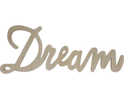 Wanddecoratie Tekst Dream Hout 76x29 Cm Kopen Bij Hornbach