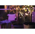 PHILIPS Hue White and Color ambiance LED buitenspot Lily zwart 24V (basisset)