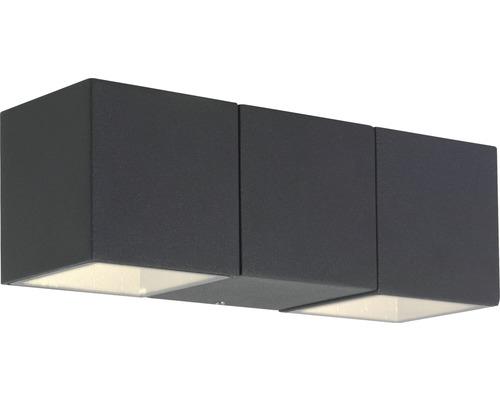 AEG LED Buitenlamp Daveen 2-lichts antraciet
