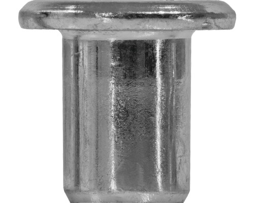 DRESSELHAUS Hulsmoer platte cilinderkop M6 verzinkt, 100 stuks