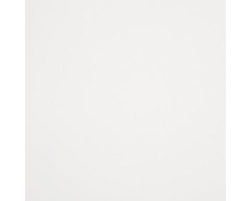GUTTAGLISS® Hobbycolor kunststof plaat, wit, 1500 x 500 x 3,0 mm